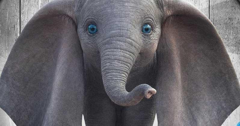 Dumbo 2019 Review The Movie Elite